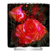 Detailed Roses Shower Curtain