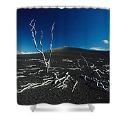 Devastation Trail Shower Curtain