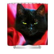Devil In A Red Dress Shower Curtain