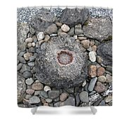 Devon Dartington Hall Stones Shower Curtain