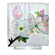 Dew And Smell Of Almond Flowers Shower Curtain