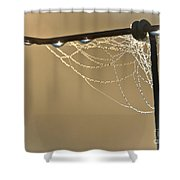 Dew And Webs Shower Curtain