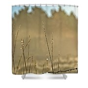 Dew Fog And Grasses Shower Curtain