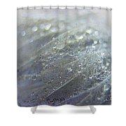 Dew On Down Shower Curtain