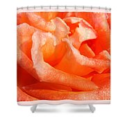 Dew Soaked Folklore Shower Curtain