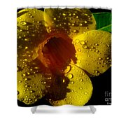 Dew Trumpet Shower Curtain