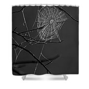 Dew Web-signed-#3322 Shower Curtain