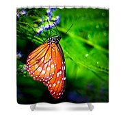 Dewdrop Butterfly Shower Curtain