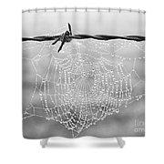 Dewdrops Shower Curtain