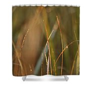 Dewy Grasses Shower Curtain
