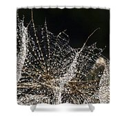 Dewy Seed Parachutes Shower Curtain