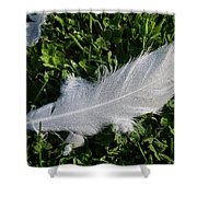 Dewy Swan Feather Shower Curtain