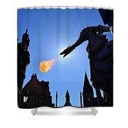 Diagon Alley Dragon Fire Shower Curtain