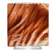 Diamond Fork Red Rock 010 Shower Curtain