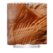 Diamond Fork Red Rock 09 Shower Curtain