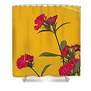 Dianthus At The Door Shower Curtain