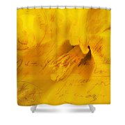 Diary Of A Buttercup Nbr 4 Shower Curtain