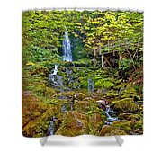 Dickson Falls In Fundy Np-nb Shower Curtain