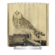Die Stein Eule Or Church Owl Shower Curtain