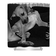 Diesel In Black And White Shower Curtain
