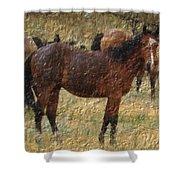 Digital Oil Painting Horses Shower Curtain