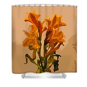 Digital Painting Lily Like Shower Curtain