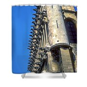 Dijon Cathedral Shower Curtain