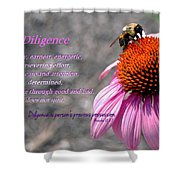 Diligence Shower Curtain
