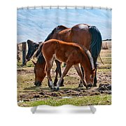 Dine With Me Shower Curtain