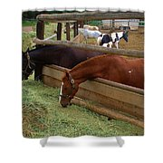 Dinner At The Ranch Shower Curtain