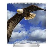 Dinner Flight Shower Curtain