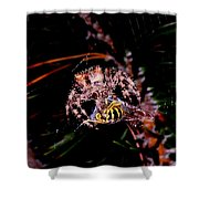 Dinner Shower Curtain