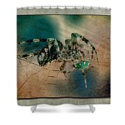 Dinner On The Half Shell Shower Curtain