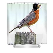 Dinner's Ready Shower Curtain