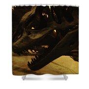 Dinosaur Bones 3 Shower Curtain