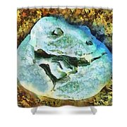 Dinosaur Hatch At Pismo Beach California Shower Curtain