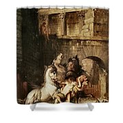 Diomedes Devoured By His Horses Shower Curtain