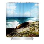 Diorama Shower Curtain