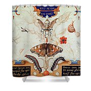 Diptych With Flowers And Insects Shower Curtain