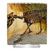 Dire Wolf Fossil Shower Curtain