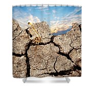Dirt And Sky Shower Curtain
