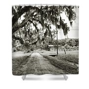 Dirt Road On Coosaw Plantation Shower Curtain