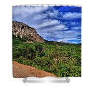 Dirt Roads And Aspen Forest In Colorado Shower Curtain