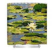 Dirty Monet Shower Curtain