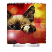 Disco Kitty 1 Shower Curtain by Andee Design