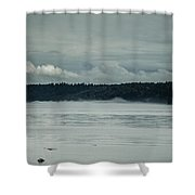 Discovery Passage Fog Rising Shower Curtain