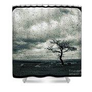 Disdain Shower Curtain