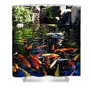 Disney Epcot Japanese Koi Pond Shower Curtain