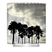 Disney's Epcot Palm Trees Shower Curtain