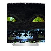 Display Shower Curtain